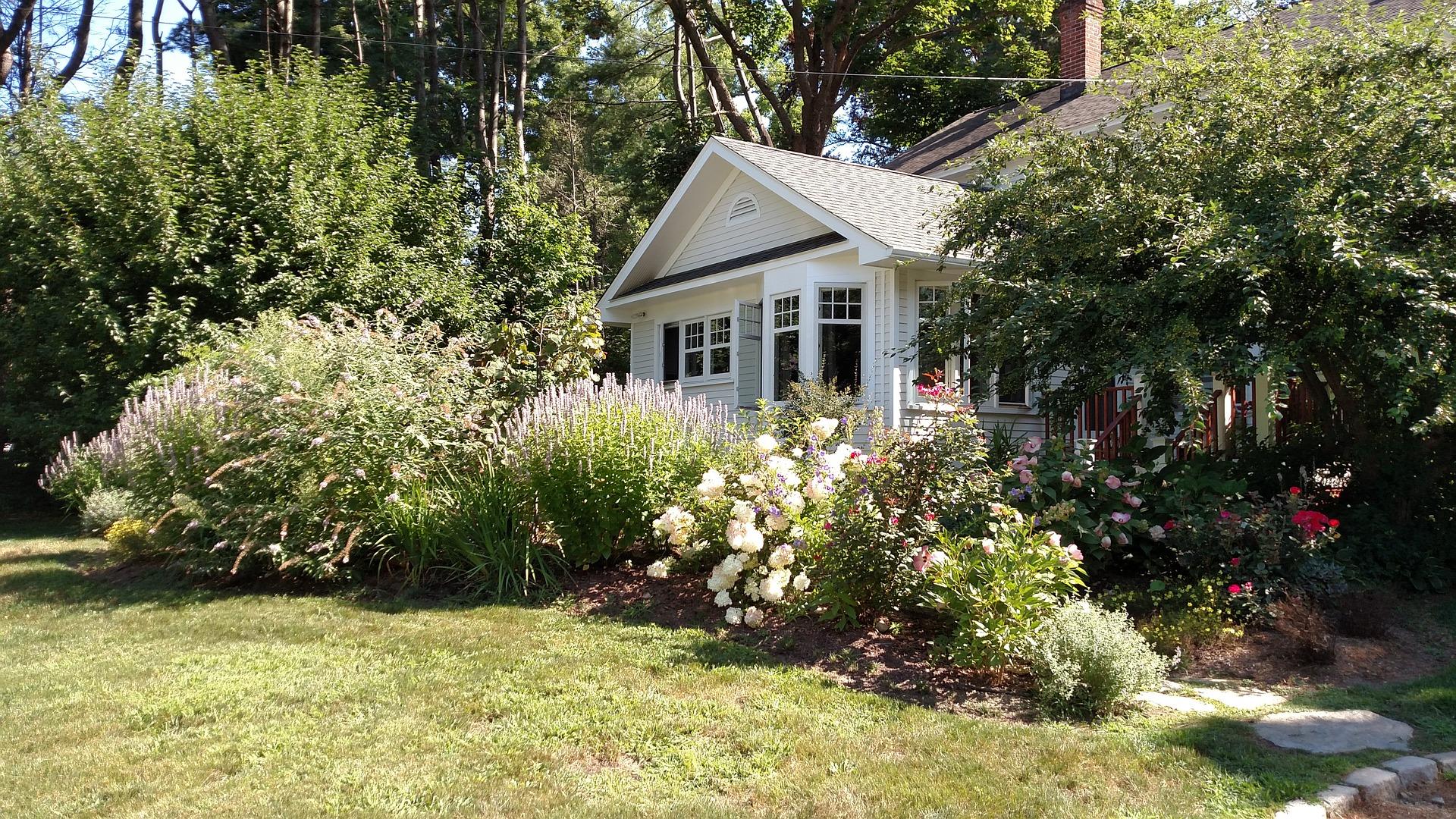 Landscaping Basics for Sustainable Yards