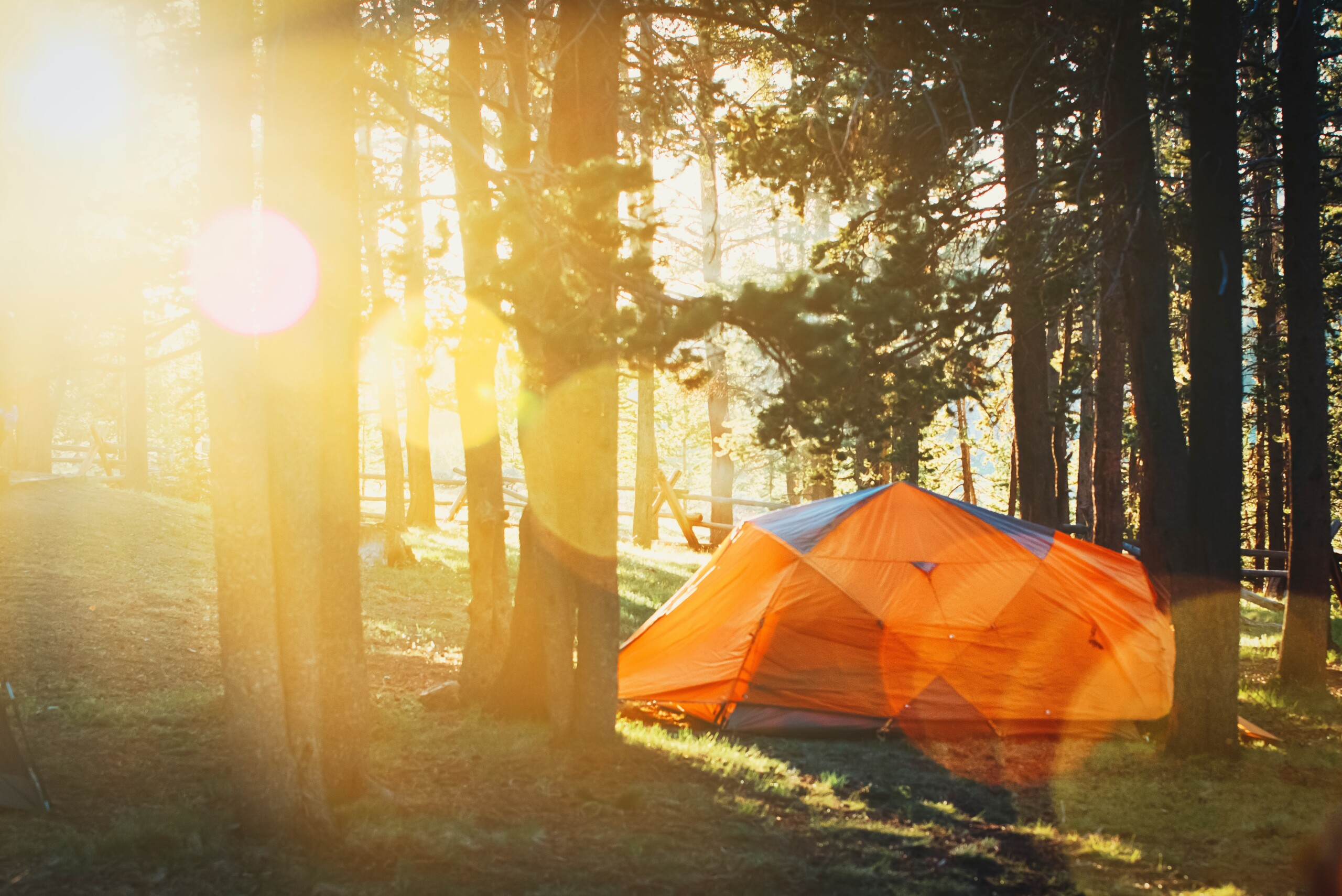 Consider Camping for a Different Vacation